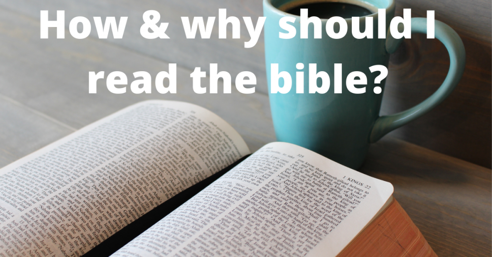 Alpha Session 6 – how should I read the bible?